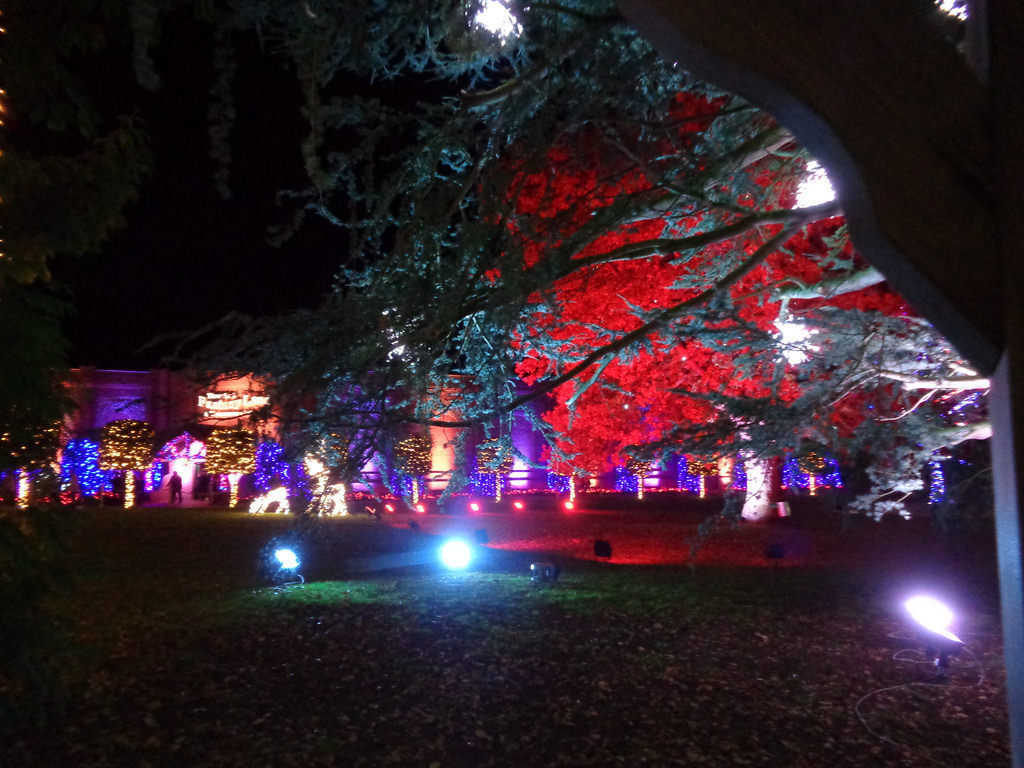 Thursford even illuminates the grounds to give the whole experience that warm Christmas feeling