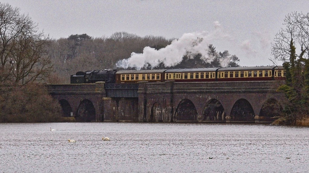 Steam Train on Swithland viaduct